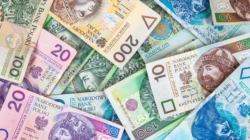 Поляки перед вибором: злоти чи євро?