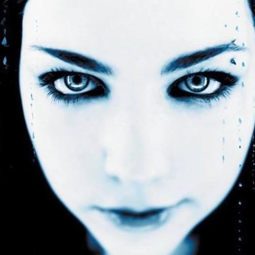 Evanescence у Чикаго