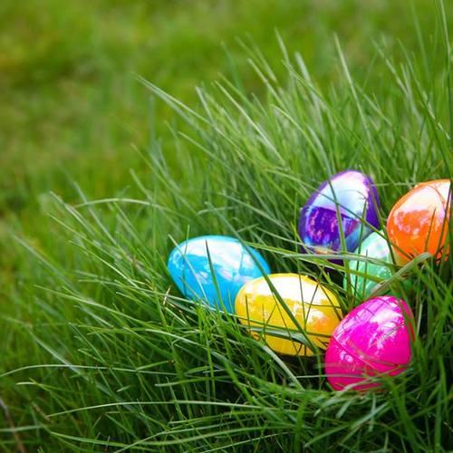 Полювання за яйцями в Чикаго