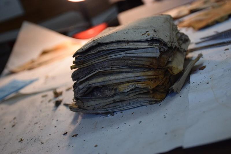 У лісах Західної України знайшли невідомі архіви УПА