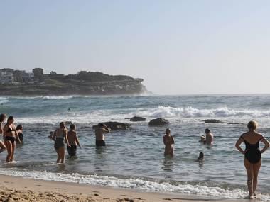 В Австралії рекордна спека: температура сягнула 50 градусів