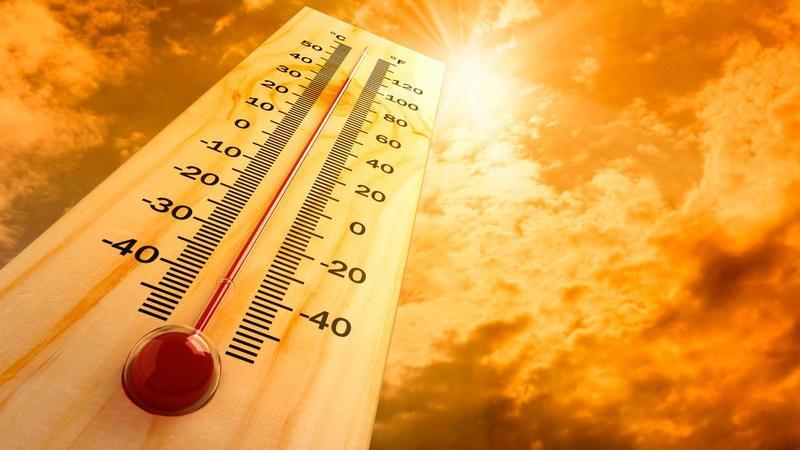 2019 рік був найтеплішим із початку минулого століття