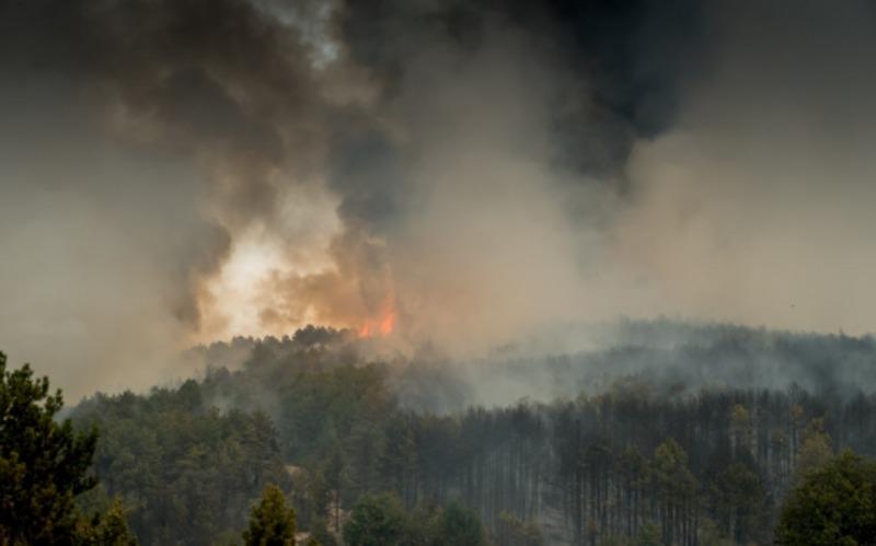Дим від пожеж в Австралії здійснив оберт навколо Землі