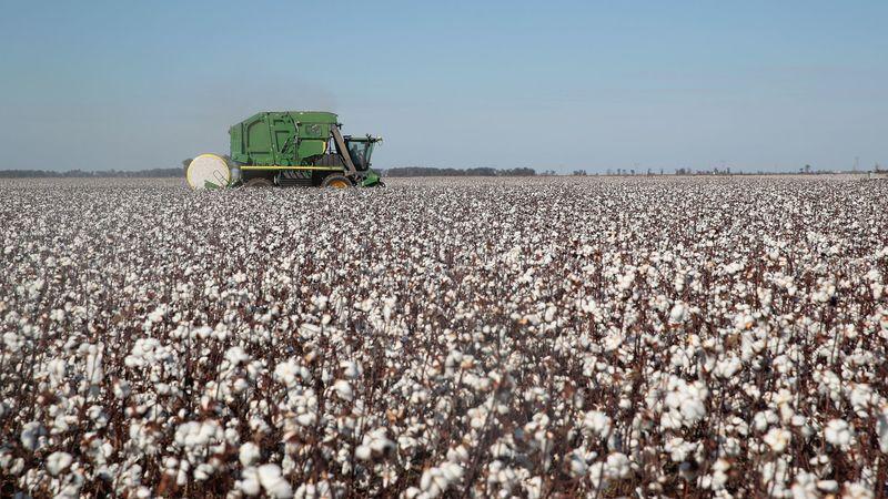 В Іллінойсі зафіксували масове банкрутство фермерів