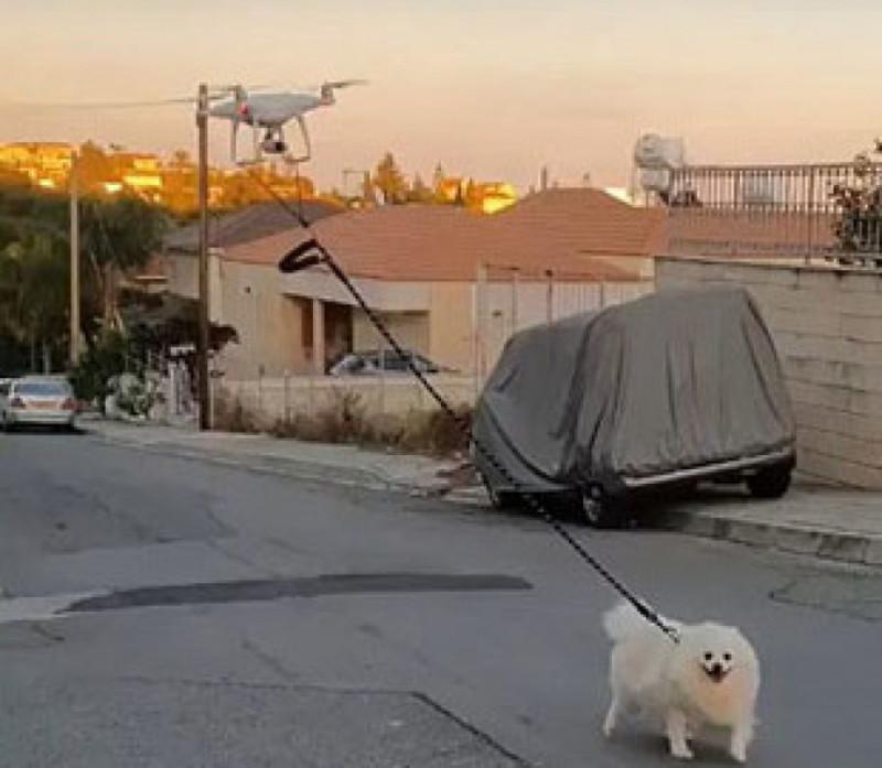 Господар на карантині вигуляв пса за допомогою дрона. Відео