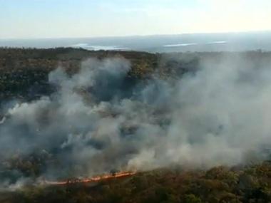 В Амазонському лісі — рекордна кількість пожеж
